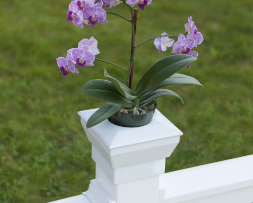 Porch Flower Planter